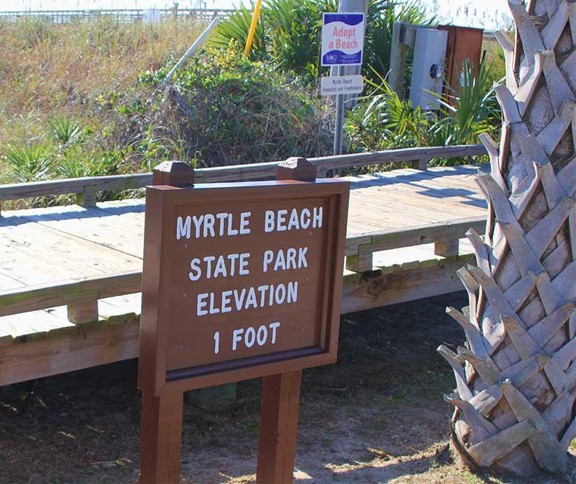 Elevation 1 Foot Myrtle Beach State Park