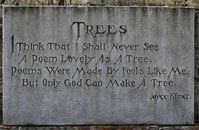Trees - Poem by Joyce Kilmer