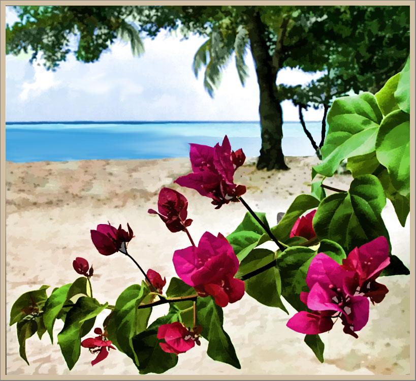 Beach And Island Wallpaper Myrtle Jamaica