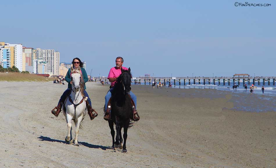 horses on the beac at Mtrtle Beach State Park 2014
