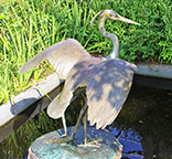 Great Blue Heron by Catherine K. Ferrell
