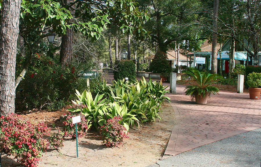 lovely walks and garden spaces in the hammock shops pawleys island pawleys island hammock shops from a local  enjoy unique local      rh   funbeaches