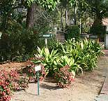 Lovely walks and garden spaces in the Hammock Shops Pawleys Island