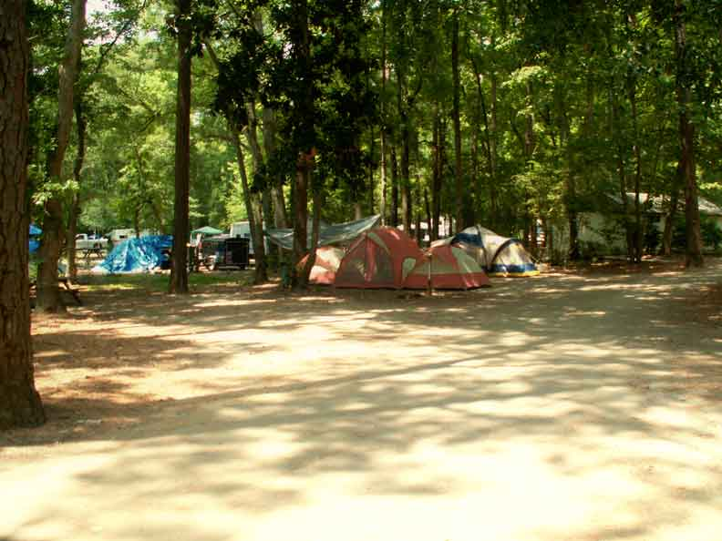 Myrtle Beach State Camping Area
