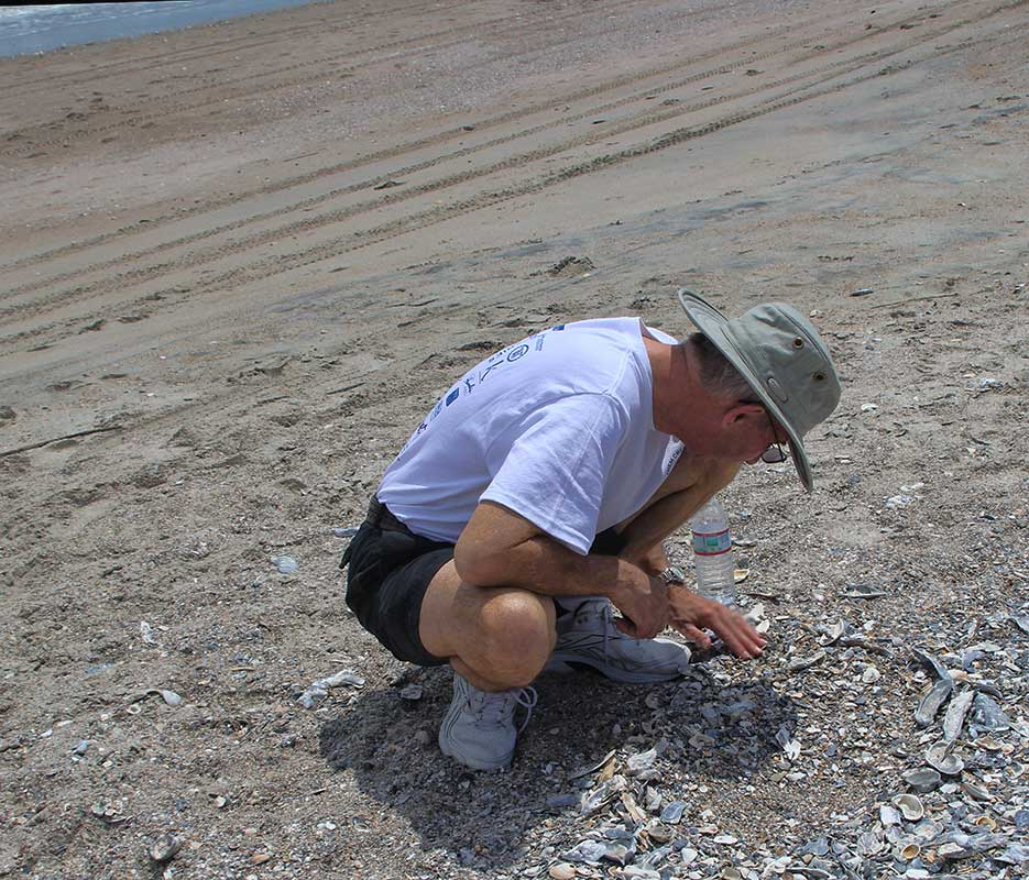 Wally May 2014 Collecting Shells